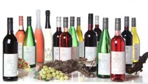 Unser Weinsortiment
