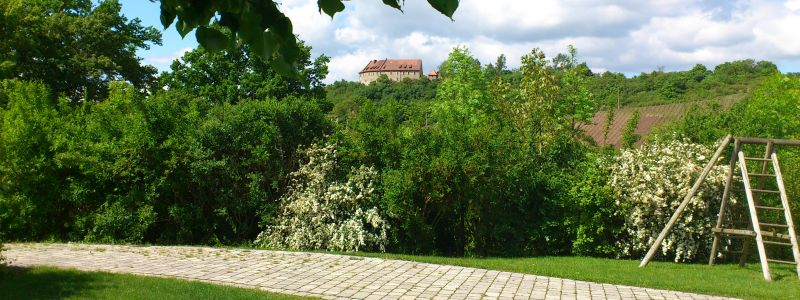 Bewirtung im Weinbergshaus inmitten der Weinberge Ipsheim